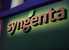 Syngenta Flags $6 Billion R&D Pipeline to Deflated Investors | Grain du Coteau : News ( corn maize ethanol DDG soybean soymeal wheat livestock beef pigs canadian dollar) | Scoop.it