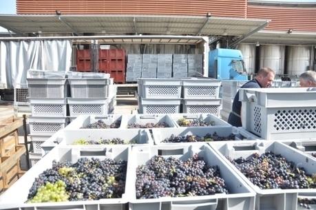 La Veuve Ambal achète un domaine de Saint-Aubin | Le vin quotidien | Scoop.it