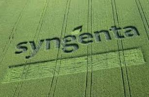 Syngenta - Another Silent Spring: Altrazine and Deadly Bee Neonicotinoids Poisoning Ecosystems and Human Health