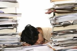 Stress, Sleep and the Brain – Neuroleadership Summit Blog Part 2 ... | Neurocapability | Scoop.it