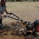 CURSO PRÁCTICO DE AGROECOLOGÍA   ECOagricultor   Agricultura ecológica y tintes naturales   Scoop.it