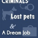 How to Snag Criminals, Lost Pets and a Job Using Pinterest - PinLeague   Digital Communication and Innovations   Scoop.it