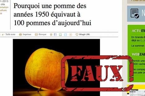 Non, les pommes d'aujourd'hui ne sont pas 100 fois moins nutritives qu'autrefois   Métro   Désinformation   Scoop.it