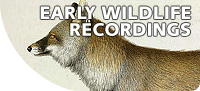 Early Wildlife Recordings at the British Library | A World of Sound | Scoop.it