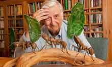 The Saturday interview: Harvard biologist Edward Wilson   Human Health   Scoop.it