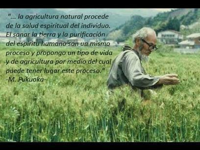 DESCARGAR LIBRO: Senda Natural del Cultivo de Masanobu ... | AGRICULTURA ORGANICA | Scoop.it