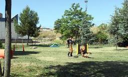 Los perros de Mérida ya tienen su primer área de recreo - Hoy Digital   Maltrato Animal   Scoop.it