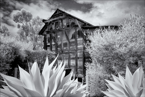 Shooting Infrared - X-Pro1 | Chris Dodkin | Fuji | Scoop.it