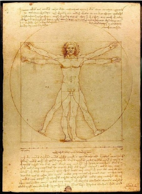 SVT et histoire des arts:L'Homme de Vitruve, dessin à la plume de ... | SVT - Lycée Franco Australien de Canberra | Scoop.it