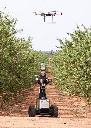 La agricultura de precisión en el olivar, cada vez más cerca   OLIVE NEWS   Scoop.it