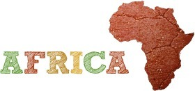 La stratégie de Google en Afrique | Le Blog de Toussiné ... | Stratégies | Scoop.it
