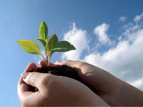 The top ten principles of sustainable branding | Brand New | Brand ... | Sustainable branding | Scoop.it