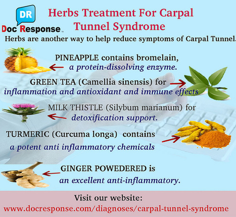 Herbs Treatment For Carpal Tunnel Syndrome | Robert Duke | Scoop.it