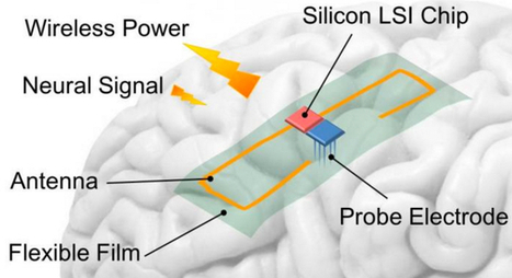 Powering brain implants without wires with thin-film wireless power transmission system | Le pouvoir du transhumanisme | Scoop.it