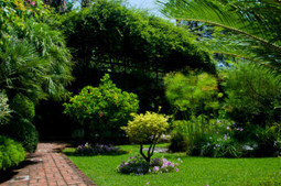 For a capable lawn care service, choose Joe's Lawn Service today!   Joe's Lawn Service   Scoop.it