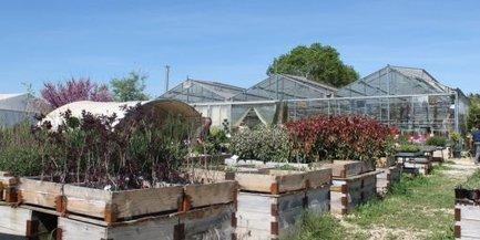 La lutte intégrée remplace la chimie à la jardinerie du Valat d'Arias | C'était un petit jardin... | Scoop.it