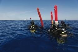 Should Surface Markers Be Mandatory When #Scuba Diving? | Nitroxxed Scuba News | Scoop.it