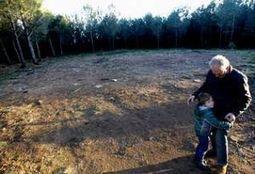 Denuncian la destrucción de una tumba del Neolítico en un monte de Redondela | World Neolithic | Scoop.it