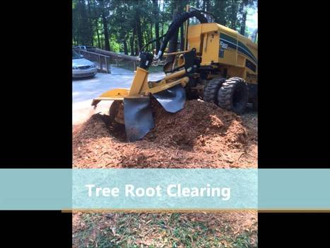 Stump Grinding Conyers | Search Engine Optimization and Internet Advertising | Scoop.it