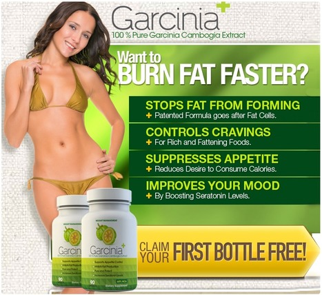 Reduced body fat and no more cellulite formation | Reduced body fat and no more cellulite formation | Scoop.it