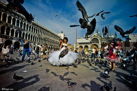 Votre mariage à l'étranger, à Venise ? - Demandez Venise-etc   Mariage à l'Italienne   Scoop.it