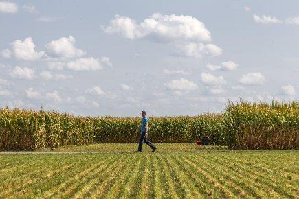 Crise alimentaire imminente | Développement durable et efficacité énergétique | Scoop.it
