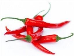 Le piment rouge et Capsicum   Bienfaits, Vertus, Posologie, Danger   Plantes médicinales   Scoop.it