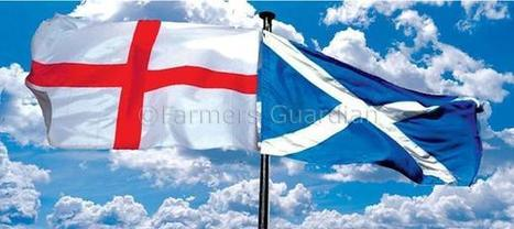 Scottish independence would hurt farmers, warns Paice | News | Farmers Guardian | Referendum 2014 | Scoop.it