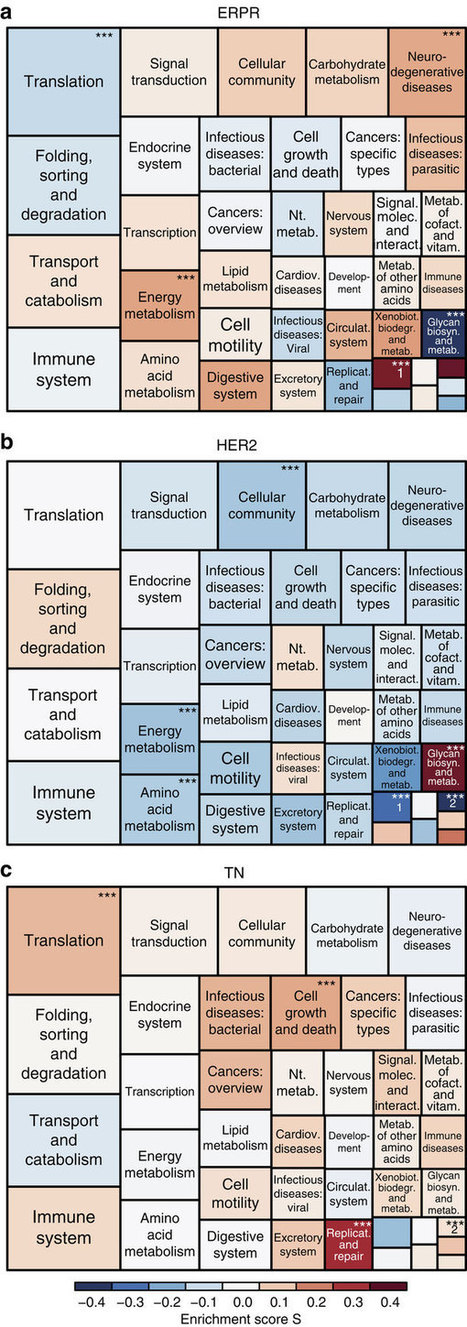 Proteomic maps of breast cancer subtypes | Plant Genomics | Scoop.it