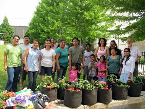 California School Garden Network | School Gardening Resources | Scoop.it