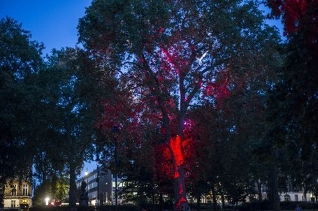 """Breathing Trees"" at the London Olympic Games 