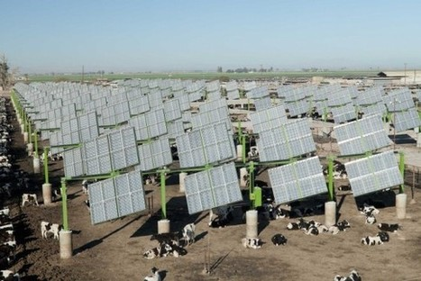 Four Things The Farm Bill Could Do For Clean Energy | Farming, Forests, Water, Fishing and Environment | Scoop.it
