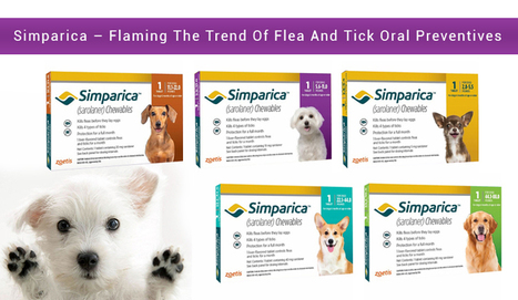 Simparica – Flaming The Trend Of Flea And Tick Oral Preventives - CanadaPetCare Blog | Pet Supplies | Scoop.it