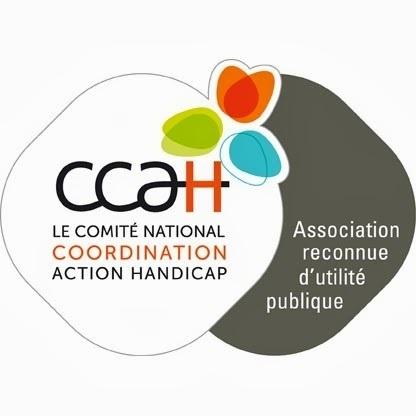 Les vainqueurs des Lauréats  2014 du CCAH | Emploi-handicap | Scoop.it