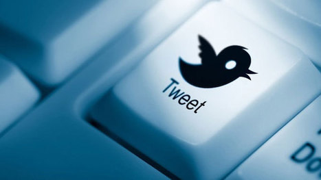 Usare Twitter come un vero professionista | ToxNetLab's Blog | Scoop.it