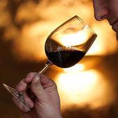 Michel Chapoutier, chantre de la biodynamie, distingué par un guide vinicole | Epicure : Vins, gastronomie et belles choses | Scoop.it