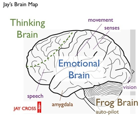 Internet Time Blog : Simple Brain Map | Jay Cross | Scoop.it