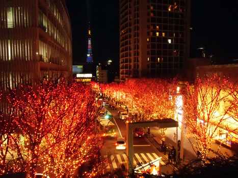 Best of Tokyo, Roppongi Christmas Lights and Events 2013! | JapanxHunter | JapanxHunter | Scoop.it