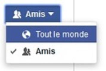 Comment Autoriser les Abonnés sur votre Profil Facebook ? | TIC et TICE mais... en français | Scoop.it