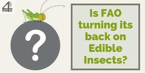 Is FAO turning its back on Edible Insects?: FAO's Senior Forestry Officer Paul Vantomme retires! - 4ento | Protein Alternatives: Insects as Mini-Livestock - #InsectMeal | Scoop.it