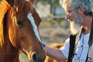 Can a Gentle Horse and Country Charm Soothe Dementia? | Alzheimer's Support | Scoop.it