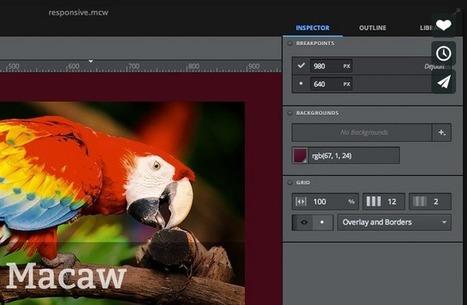 Key Features of MACAW - Web Design Tool | Web Designing in Pakistan | Scoop.it