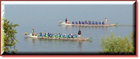 The Incredible Dragon Boat Festival Of Oswego NY   Visitoswego   Scoop.it