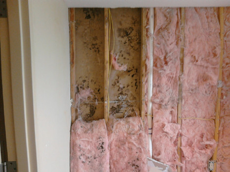 Mold Removal from Drywall   Mold Remediation Orange County   Gregory Restoration   Gregory Restoration   Scoop.it