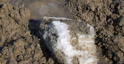 La variole pourrait resurgir de corps congelés en Sibérie | Planete DDurable | Scoop.it