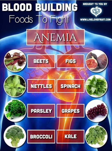 Fighting Anemia   Foods For Healthy Blood   Skinny Wraps for Guys and Gals   Scoop.it