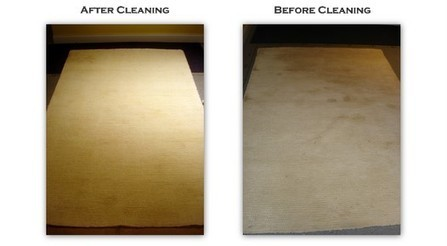 Fall in Love with your Rug Again! Chicago Rug Cleaning(888) 449-3227   Carpet Care   Scoop.it