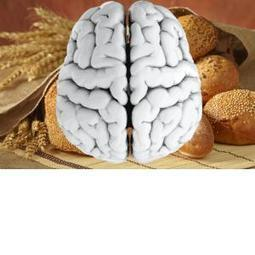 This Is Your Body (and Brain) on Gluten | wellness | Scoop.it