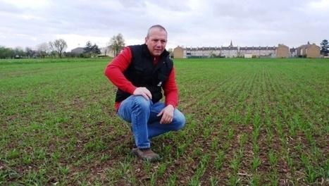 Groupama étudie de nouveaux contrats pour ne pas rater le rendez ... - Terre-net | Assurances des agriculteurs | Scoop.it