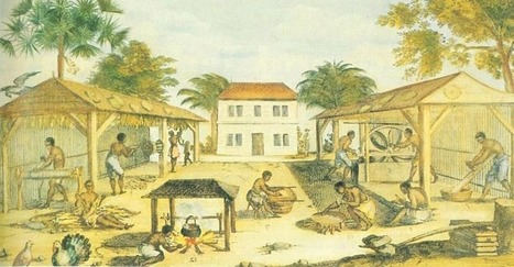 5 Shocking Facts About Slavery, Natives and African Americans   Living   Scoop.it